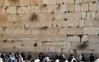 Shalom from Jerusalem!