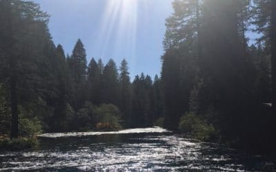 On the McCloud River